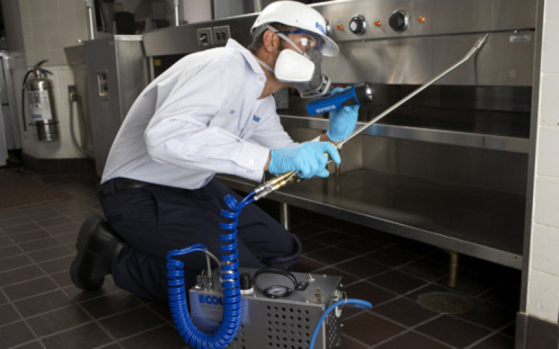 pest control for restaurant owners image
