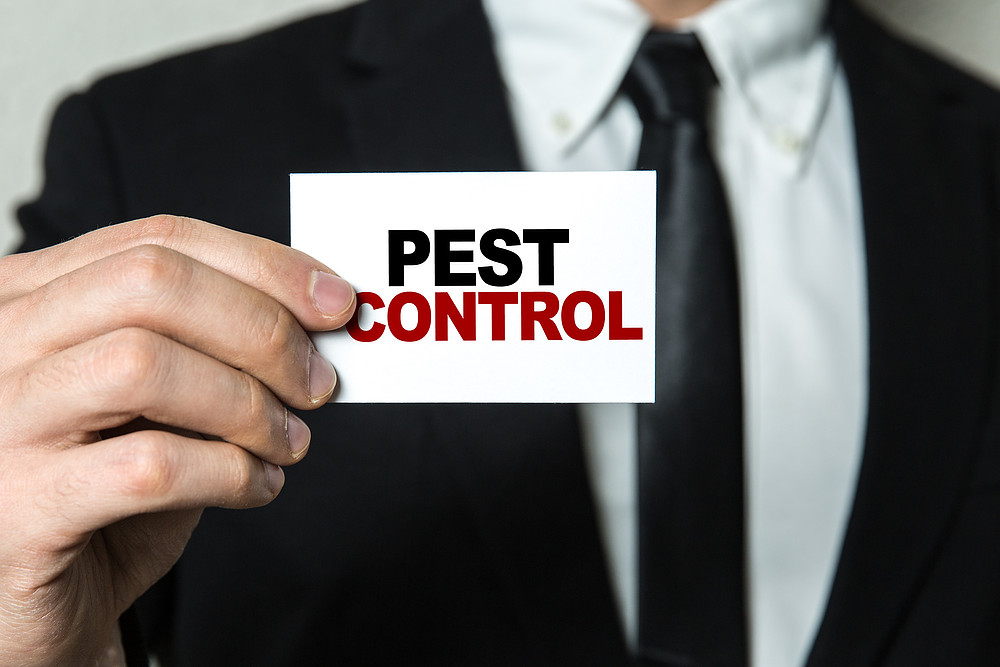 pest control mistakes by restaurant owners